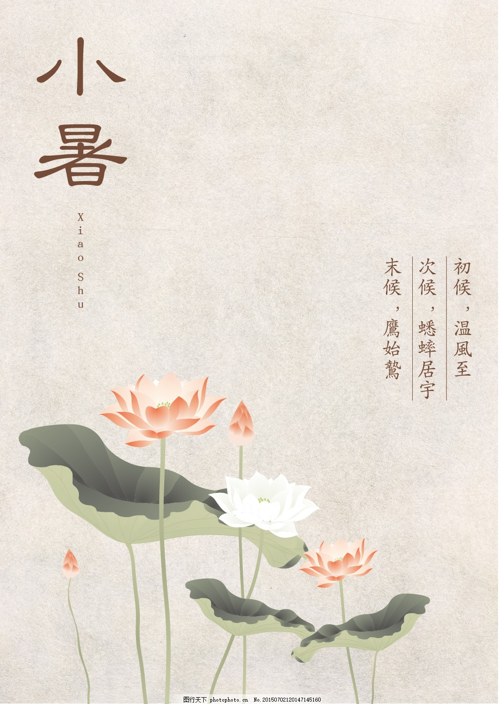 24节气—小暑 古风 中国风 荷花 古典 白色