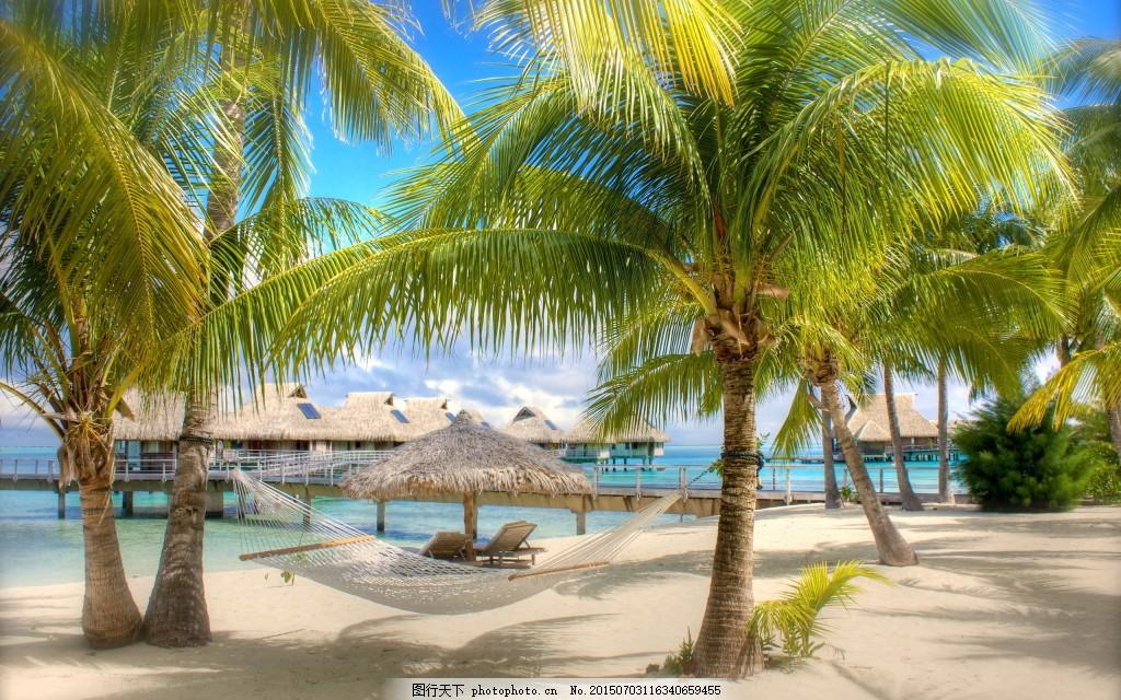 沙滩椰树风景