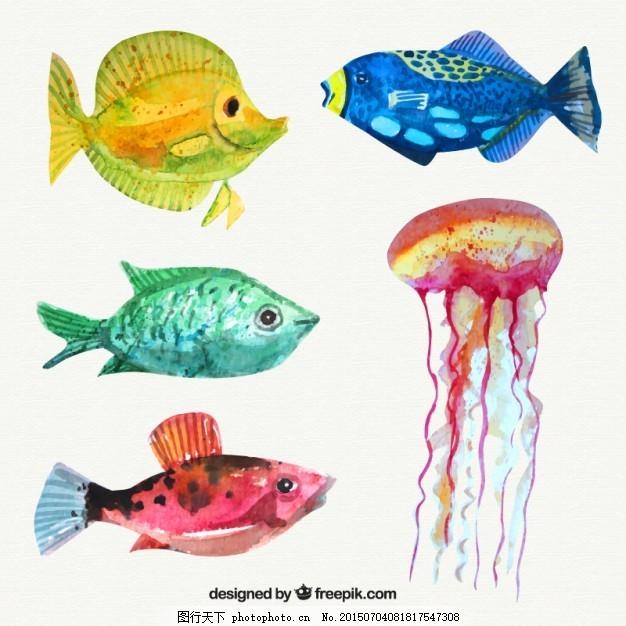 水彩画鱼和水母 水彩画 一方面 鱼 自然 动物 颜色 规模 野生 野生