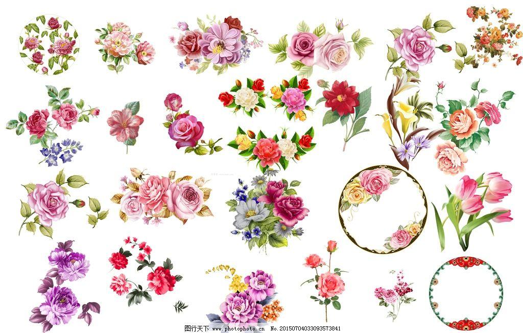 各种手绘画 免抠手绘花卉 花卉素材psd 玫瑰花素材 牡丹花素材 月季花