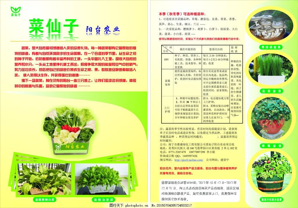 阳台农业 阳台农业宣传海报 阳台种菜 绿色生活 白色