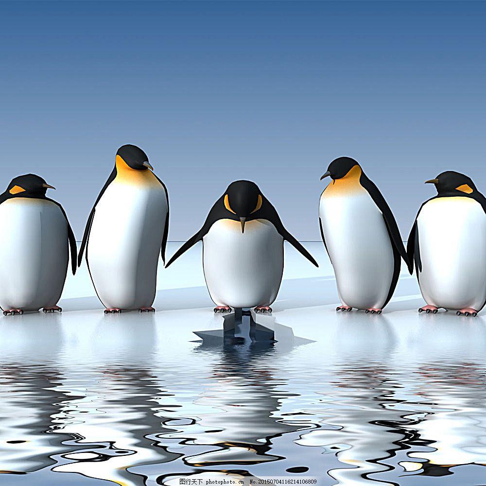 美丽企鹅亮照 企鹅排队 南极 野生动物 生物世界 摄影冰山 广告模版