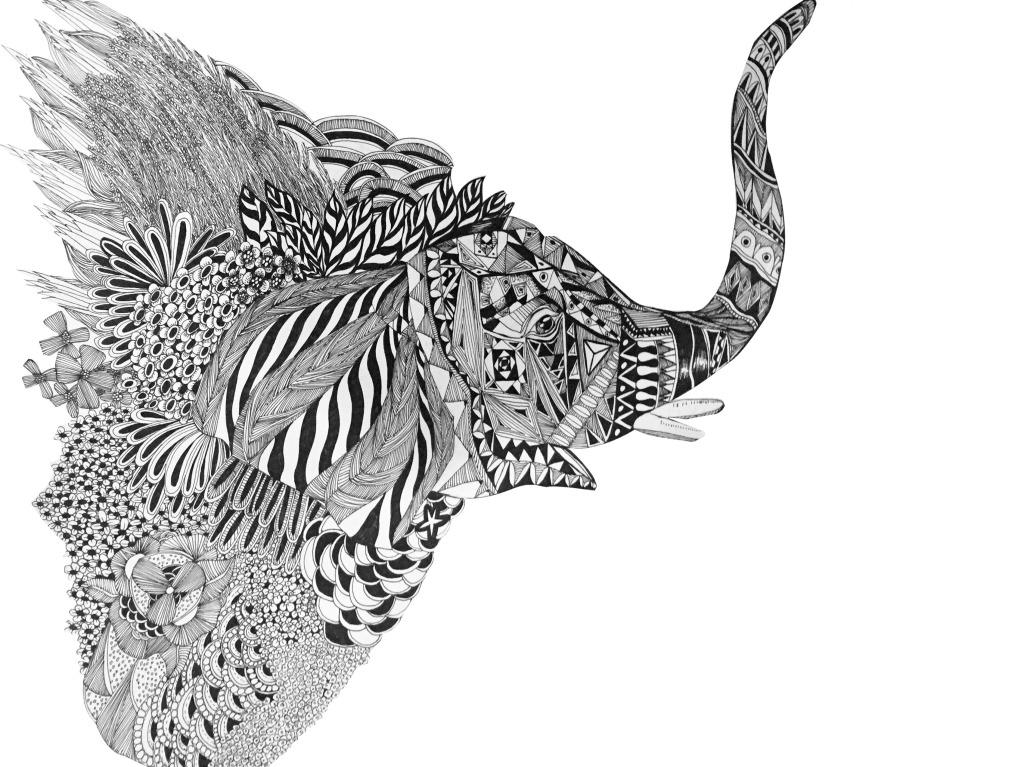 大象手绘 手绘 线描 黑白 插画 动物 植物     白色 jpg