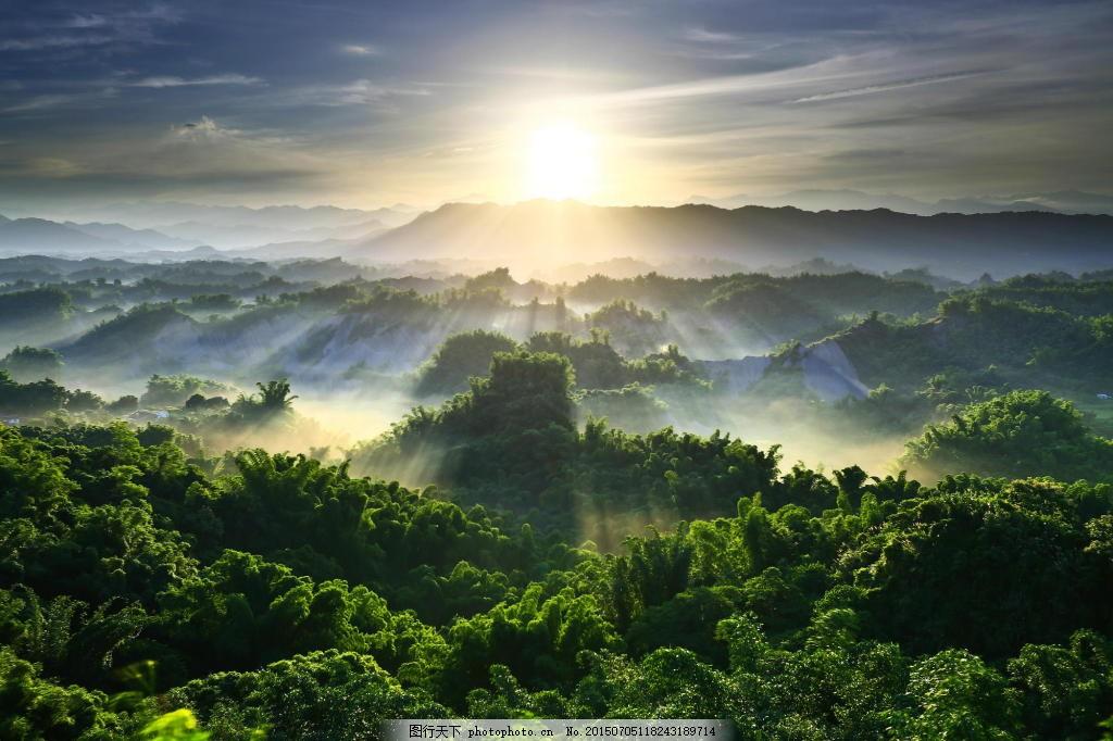 森林背景图片素材 阳光 烟 树木 天空 云 森林背景图片免费下载
