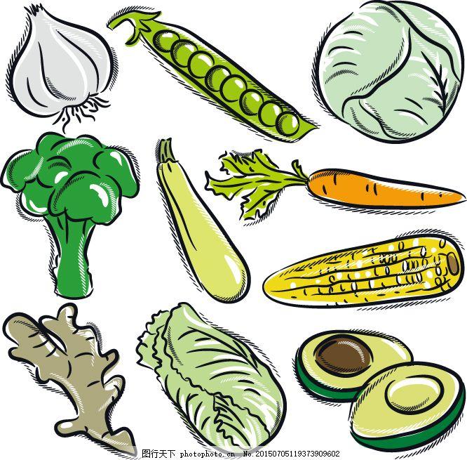 手绘蔬菜玉米素材图片