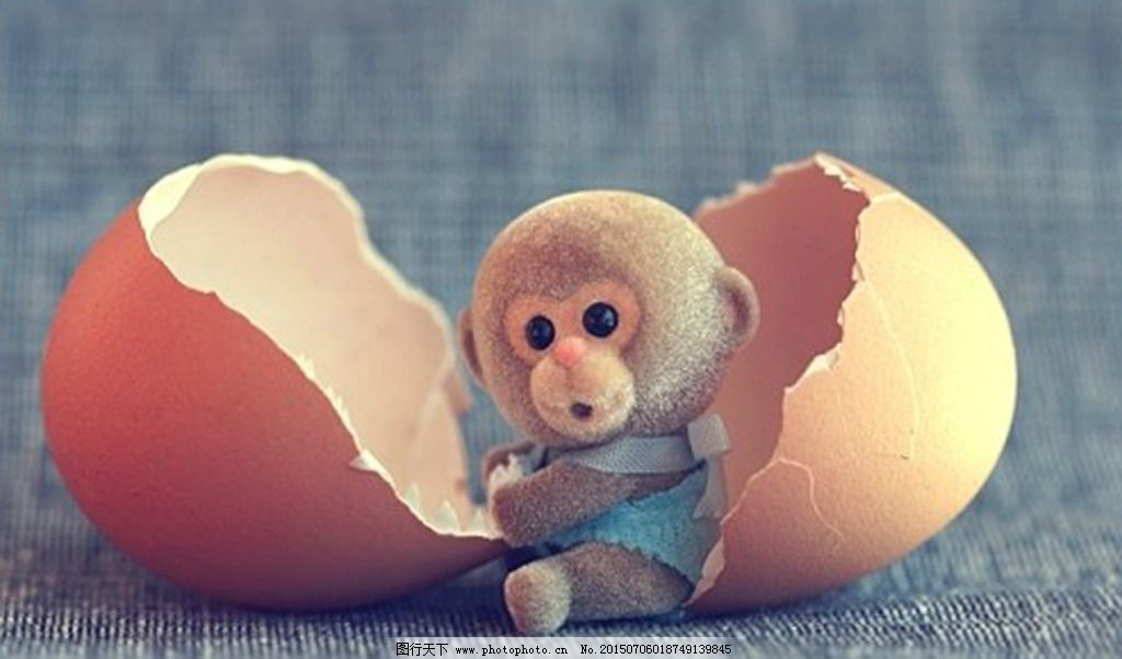 创意 猴子 鸡蛋 小猴 鸡蛋 小猴 猴子 创意 图片素材 卡通|动漫|可爱