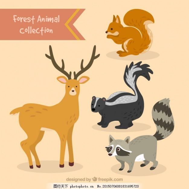 手工绘制可爱的森林动物集合