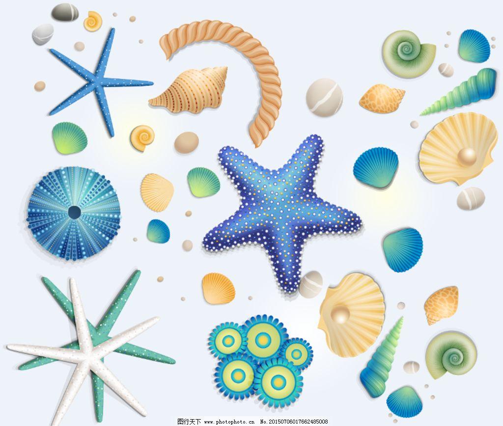 海星海洋生物高清大图图片