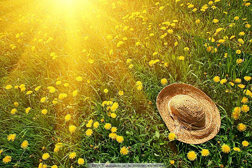 夏天风光高清 图片素材 摄影图片 草帽 草地 春天 风景图片 帽子