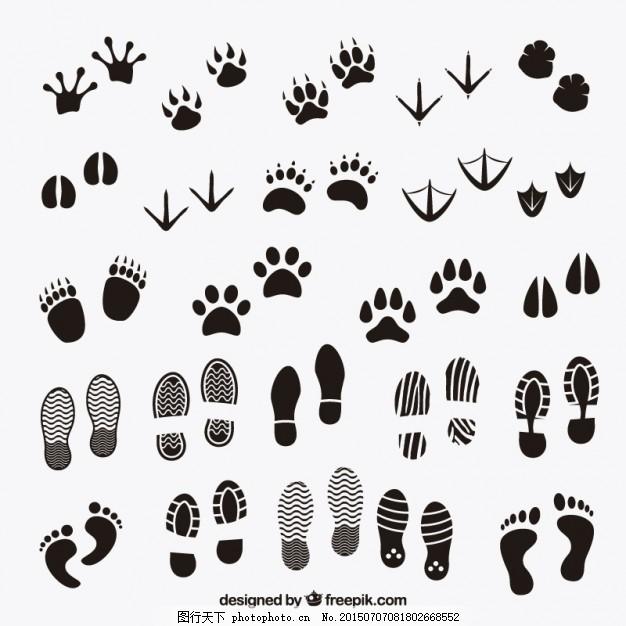 动物和人类的脚印