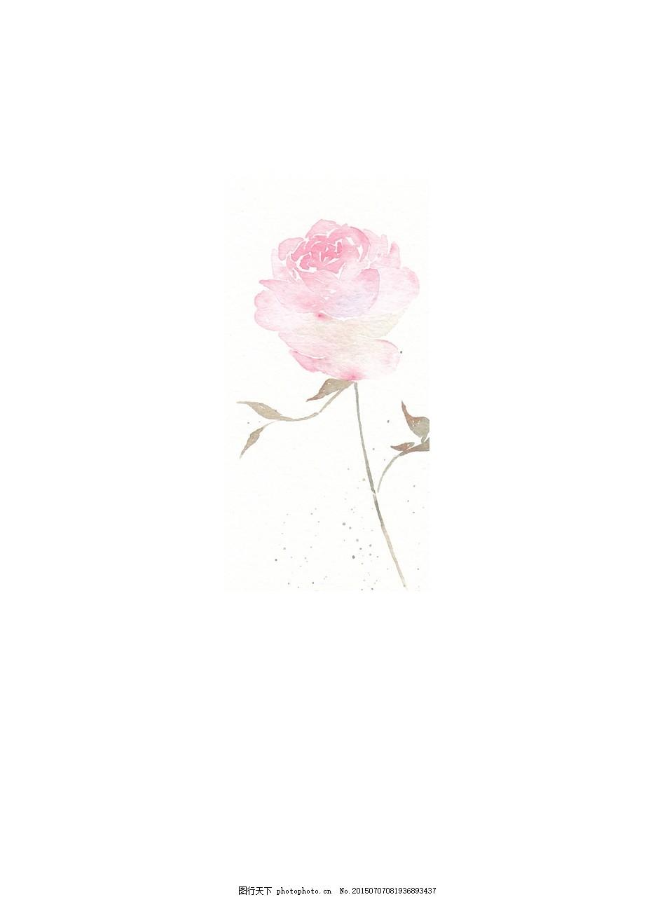 手绘玫瑰花素材元素
