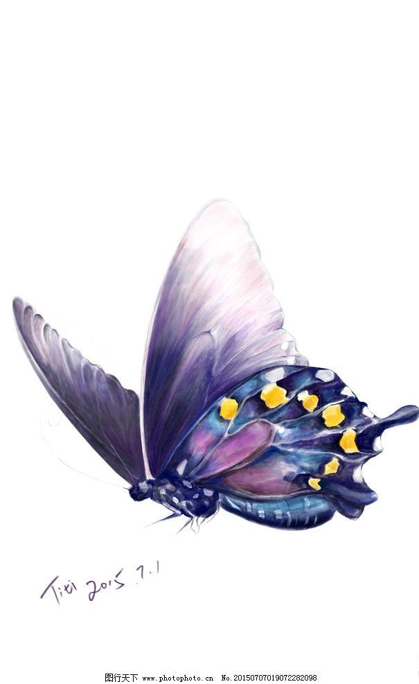 紫色手绘蝴蝶图片