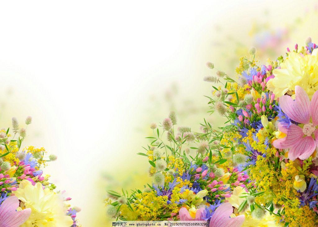 花卉手绘素材向日葵