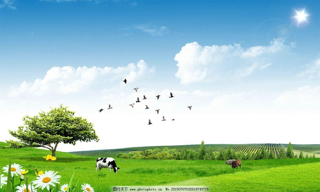 唯美 草原 牧场 动物 背景 设计 psd分层素材 风景 300dpi psd