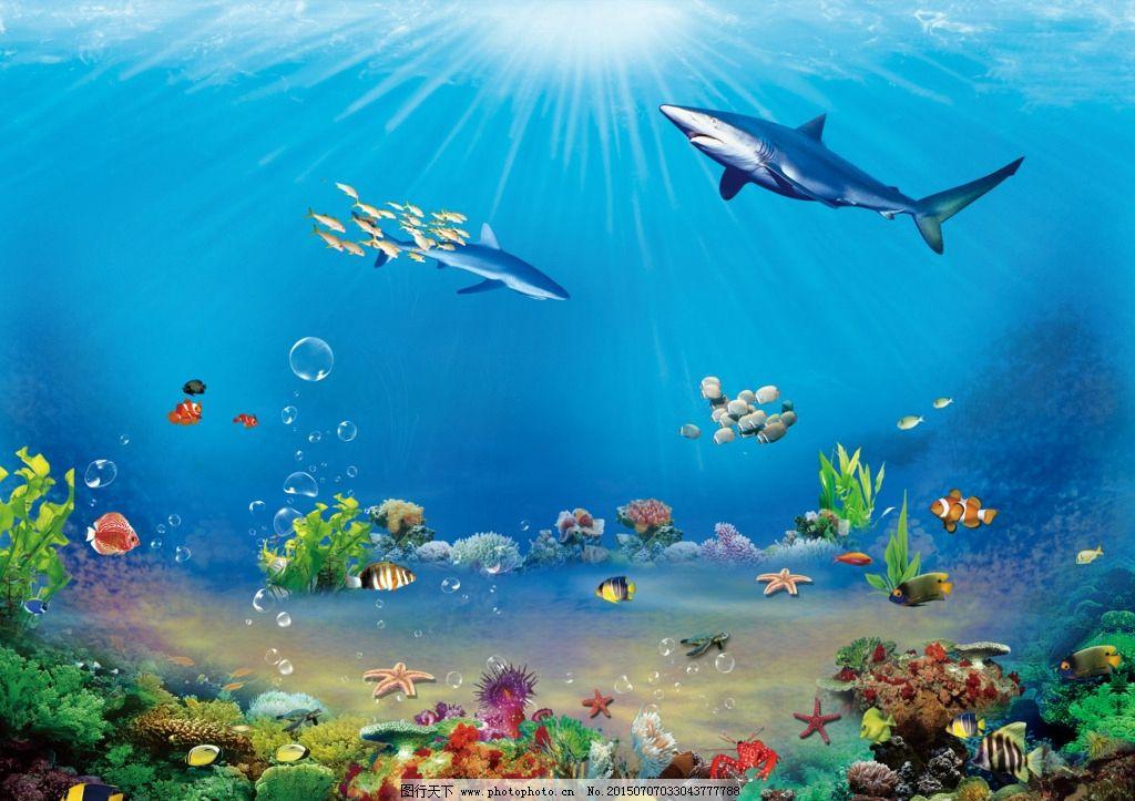 海洋世界 海报 海洋主题 水族 海底世界 设计 psd分层素材 psd分层图片