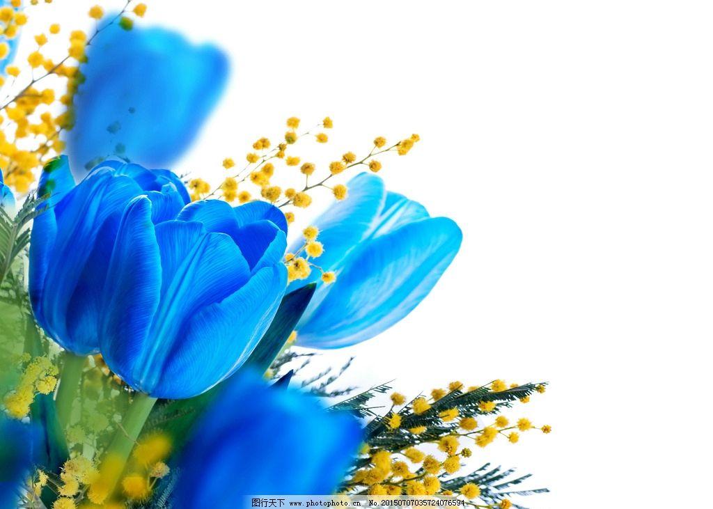 手绘桌面壁纸蓝色