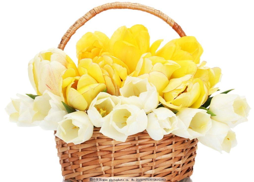 彩色花朵 手绘设计 手绘花朵