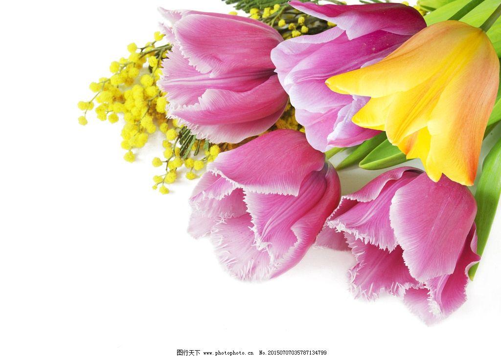 粉色小清新手绘桃花