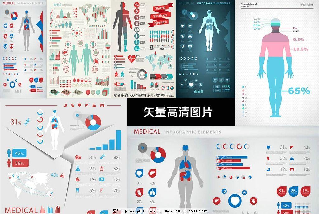 内脏 人体 皮肤 部位 身体指标 矢量设计 高清 身体情况 人体分布图