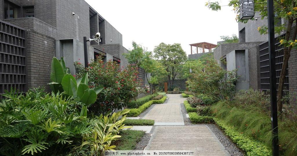 中式景观 新中式建筑 宅间花园 中式花园 中式庭院 摄影 建筑园林图片