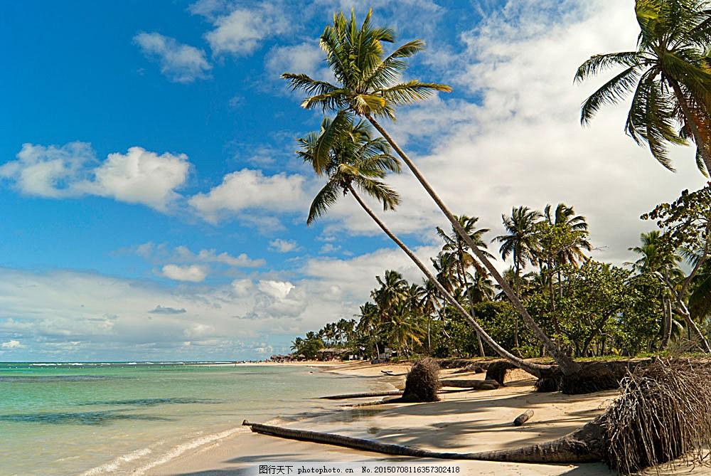 海边 景色 椰子树 大海边 海南风光 沙滩 热带沙滩 海边风景