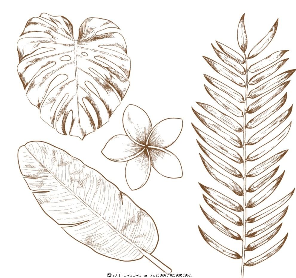 手绘热带植物矢量素材 手绘 热带植物 植物 树叶 叶子 树枝 花卉 花朵