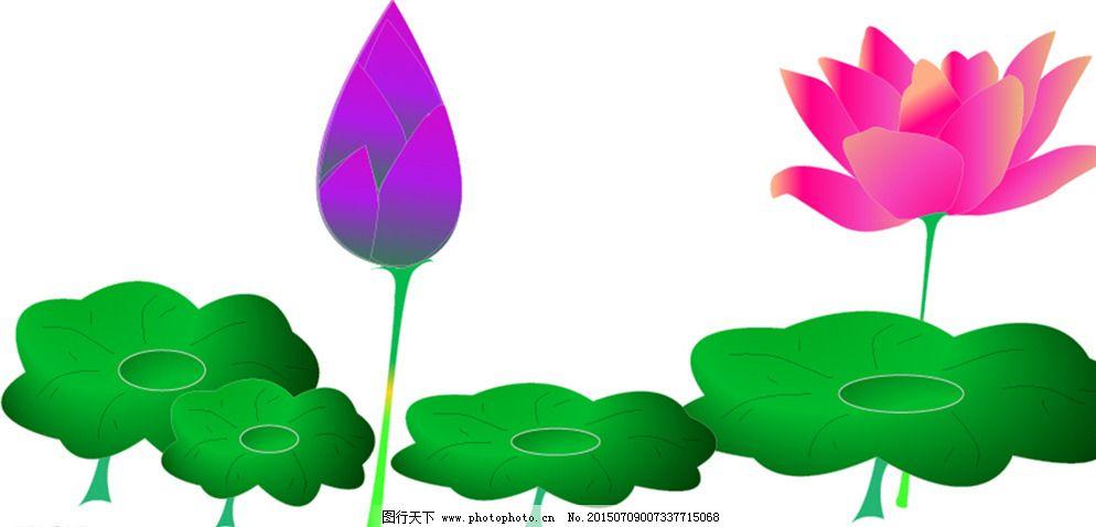 ai 广告设计 荷花 荷叶 花 设计 手绘 招贴设计 荷花 手绘 ai 荷叶 花