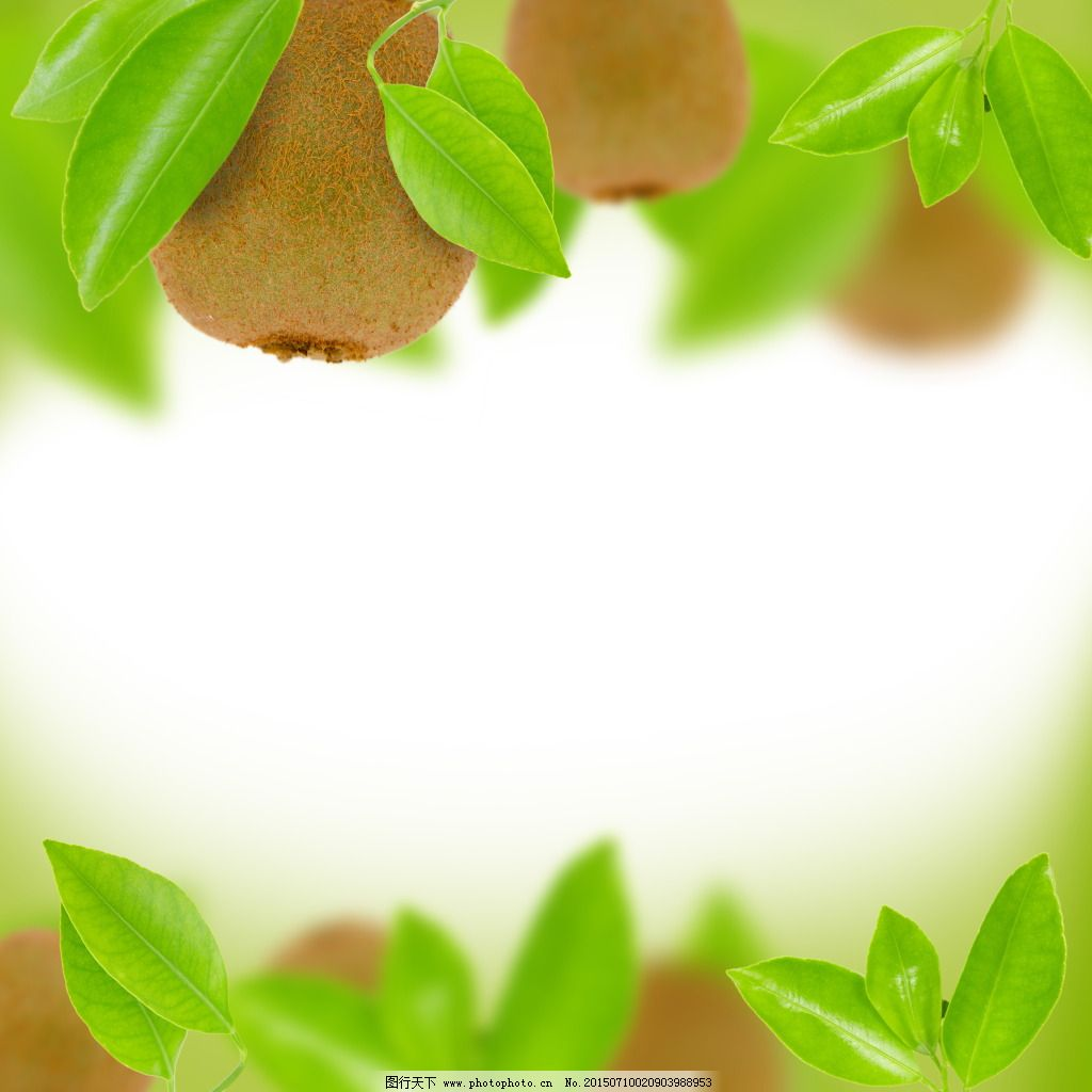 猕猴桃 背景图片 水果背景 奇异果 绿色水果 新鲜 水果 绿叶 叶子