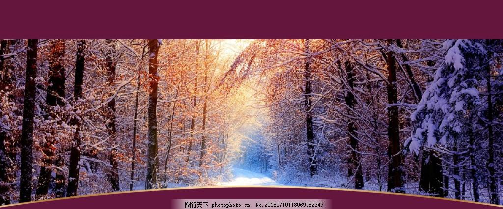 雪林海报背景图 125 雪景 雪树 雪树林 背景素材 淘宝 天猫 1920全屏