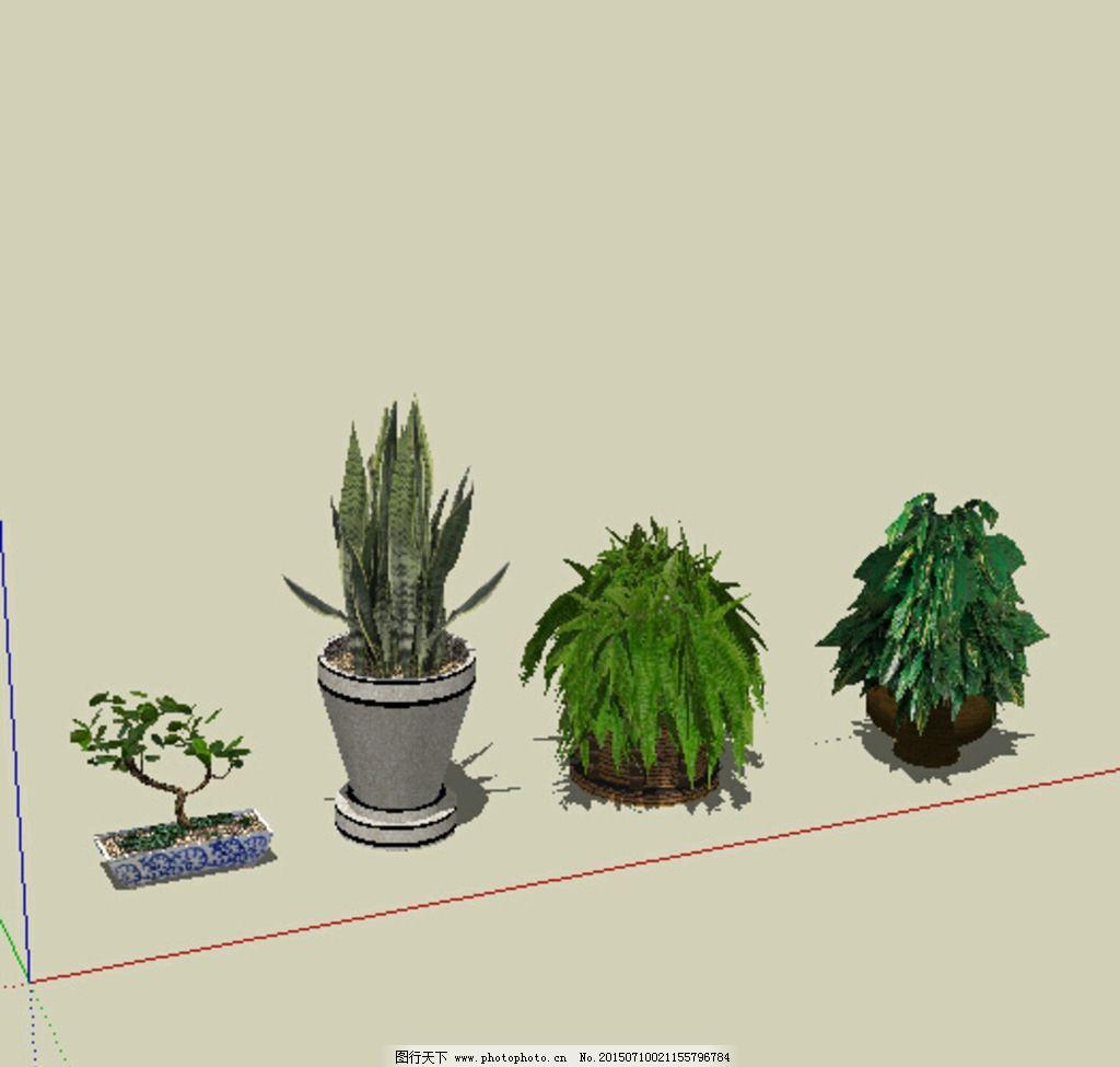 sk 室内植物 装饰 设计 3d 设计 3d设计 3d设计 skp