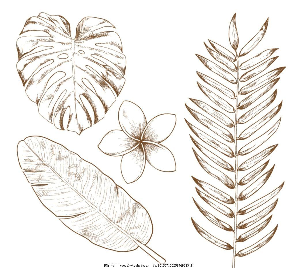 手绘热带植物 素材下载 鸡蛋花 棕榈叶 芭蕉叶 矢量图 其它