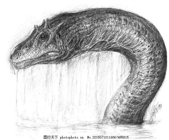 动物素描 怪兽