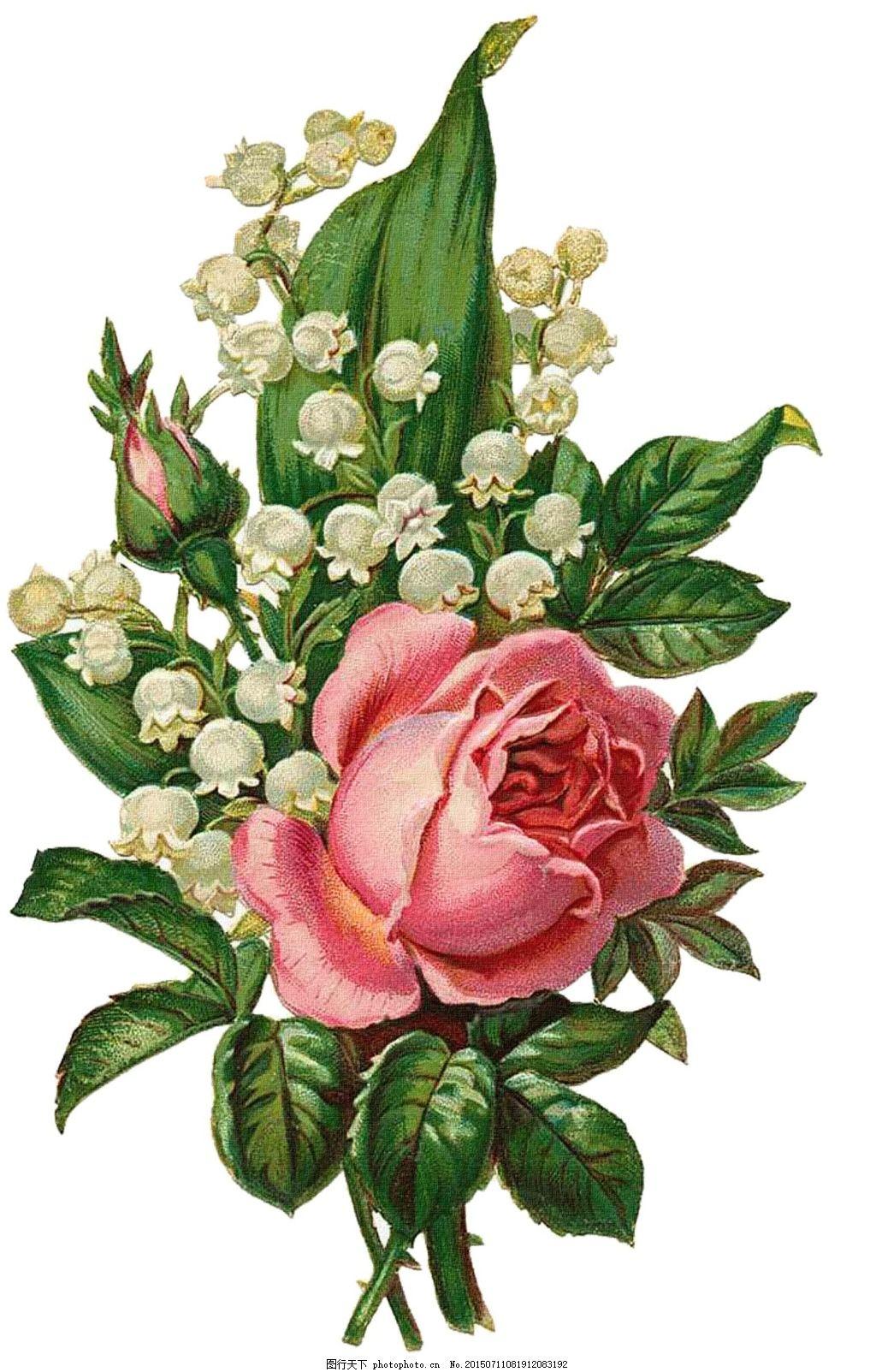 花 花朵 印花 手绘玫瑰花 清雅 玫瑰花 陶瓷花纹 陶瓷花卉 手绘花纹