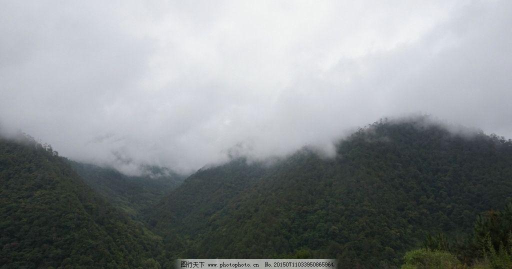 云雾 高山 森林 树木 山上的公路 山路 盘山公路 丽江旅游 摄影 旅游