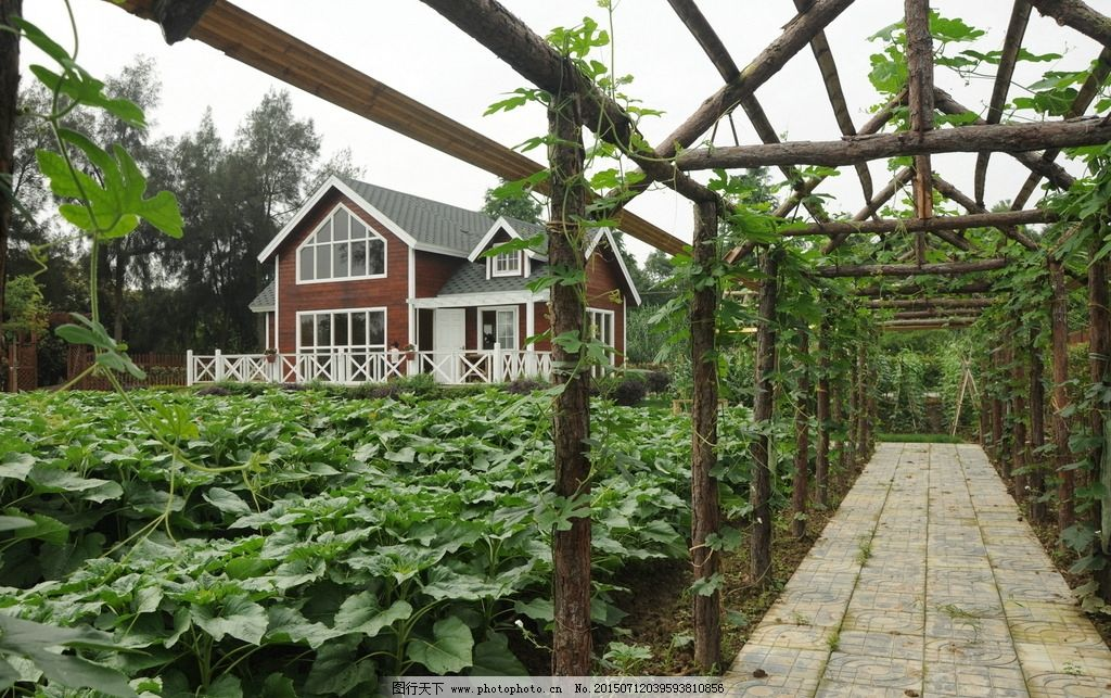 木屋别墅 木栏杆 木栅栏 草坪 花园 生态园林 石子路 建筑 摄影