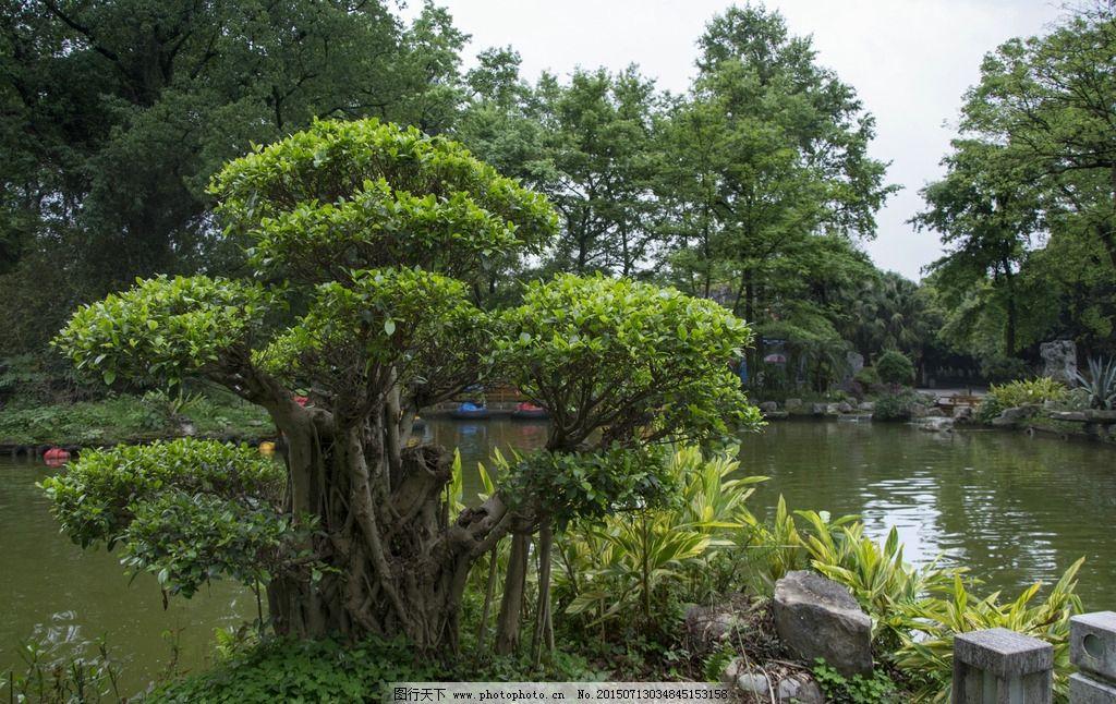 中式园林 园林 园艺 花园 公园 桂林山水 桂林 桂林风光 青山绿水图片