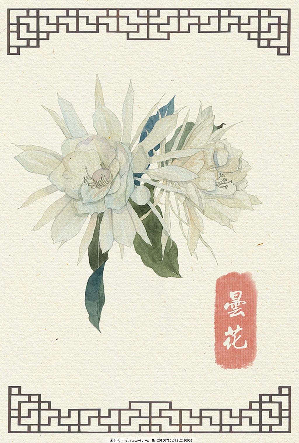 昙花 古风 花卉 手绘 水彩 插画 白色