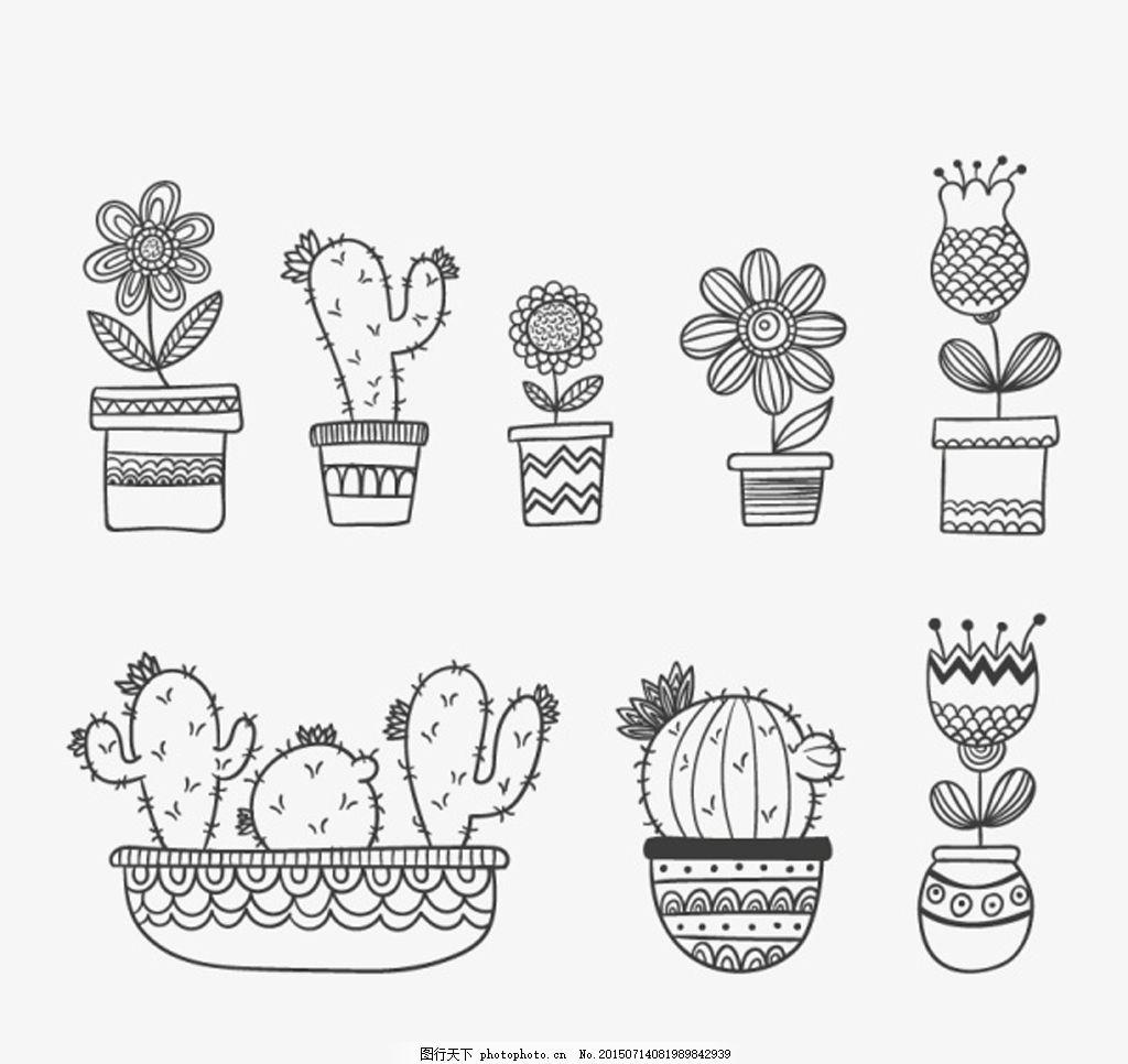 花卉图片 线描花卉 线描植物 线描盆栽 盆栽 仙人掌 植物 手绘花卉