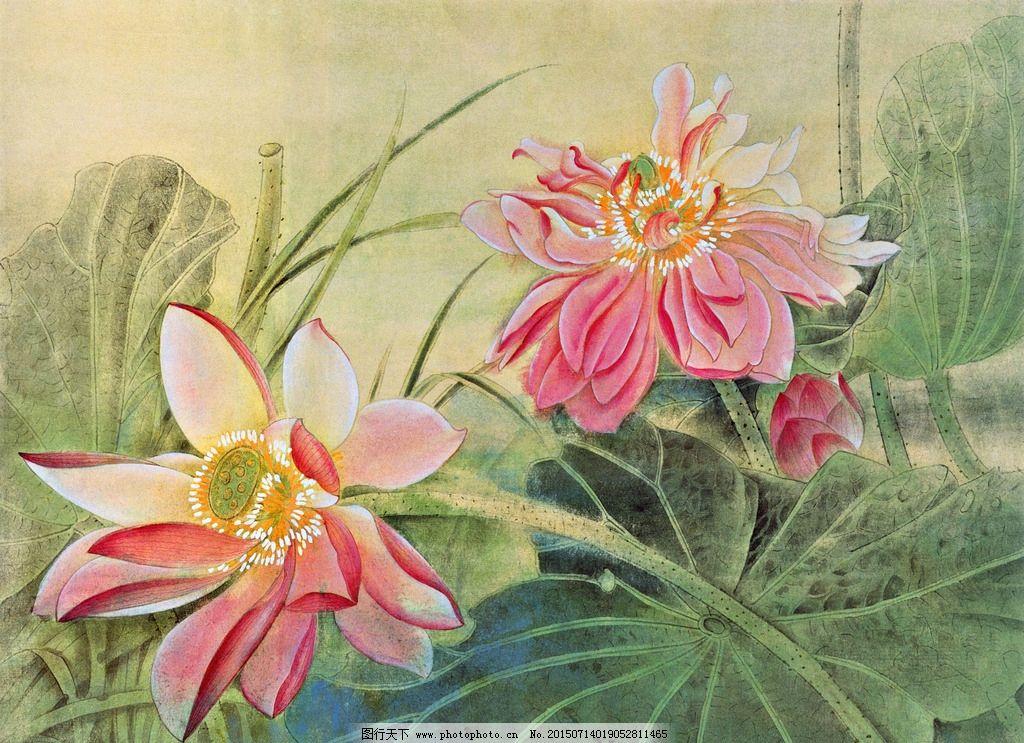 装饰画 荷花 国画 水彩画 工笔画 设计 文化艺术 绘画书法 72dpi jpg