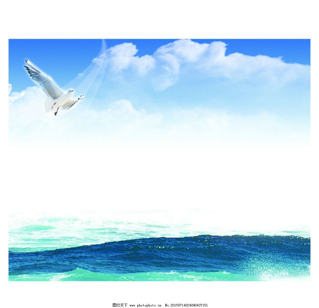 大海 海鸥 风景画图片