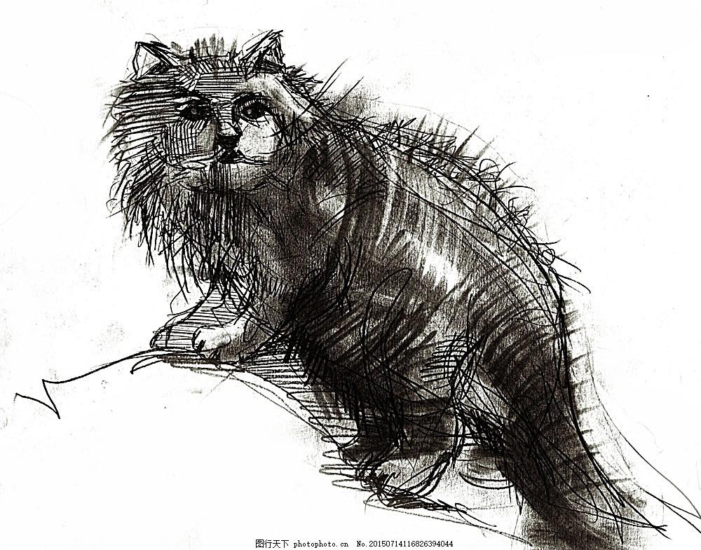 素描小猫 动物 动物世界 摄影图 猫咪 绘画 陆地动物 生物世界