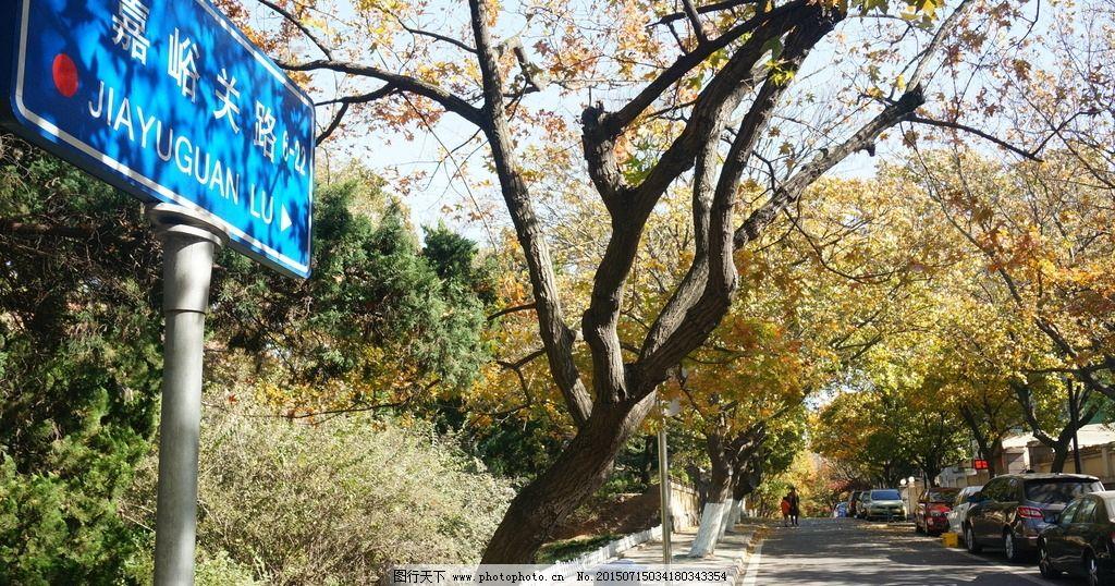 八大关 青岛 秋景 落叶 嘉峪关路 摄影 旅游摄影 自然风景 350dpi jpg