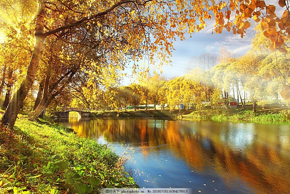 秋天湖泊树木风景