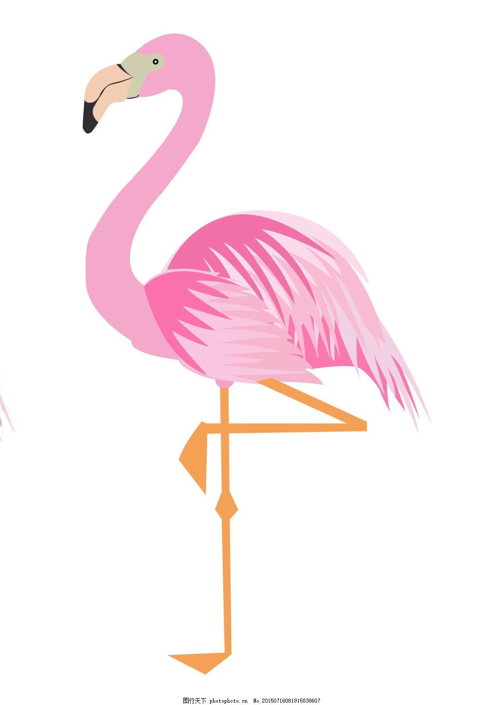 火烈鸟 少女 粉红 卡通 白色