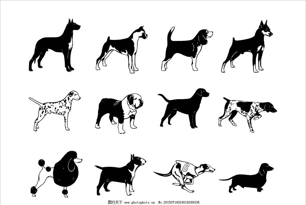 狗 矢量图 动物 黑白