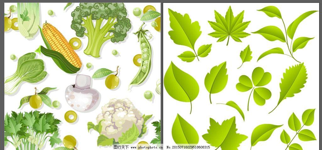 蔬菜卡通画边框