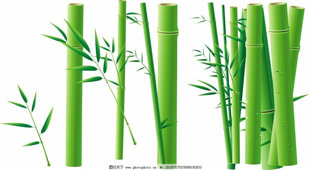 竹子马克笔手绘立面图