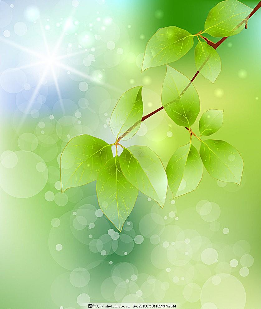 绿色背景 绿色 绿叶 水流 背景 唯美 宣传单 背景底纹 底纹边框 设计