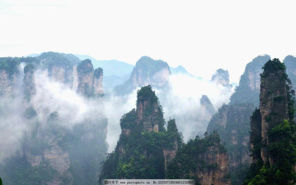 张家界 云雾 雨后 名胜 武陵源 奇石 风景 松树 绝景 山景