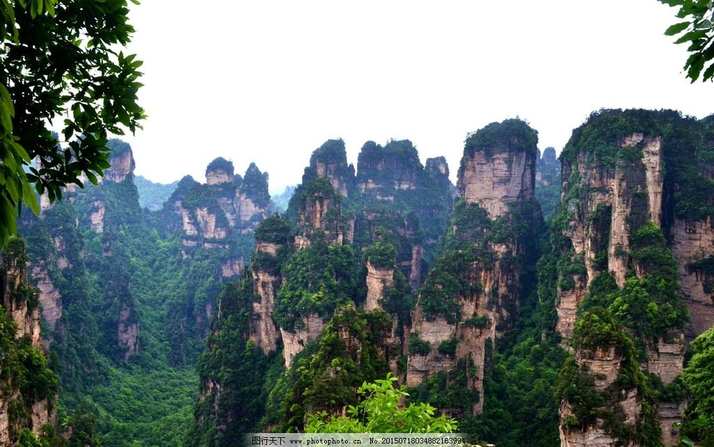 张家界 名胜 武陵源 奇石 风景 松树 绝景 山景 摄影 自然景观 自然